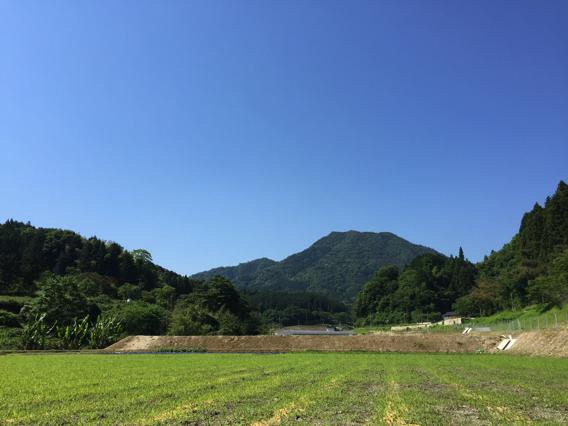 http://mag.akyrise.jp/akynouen/upload_images/02_renkasan.jpg