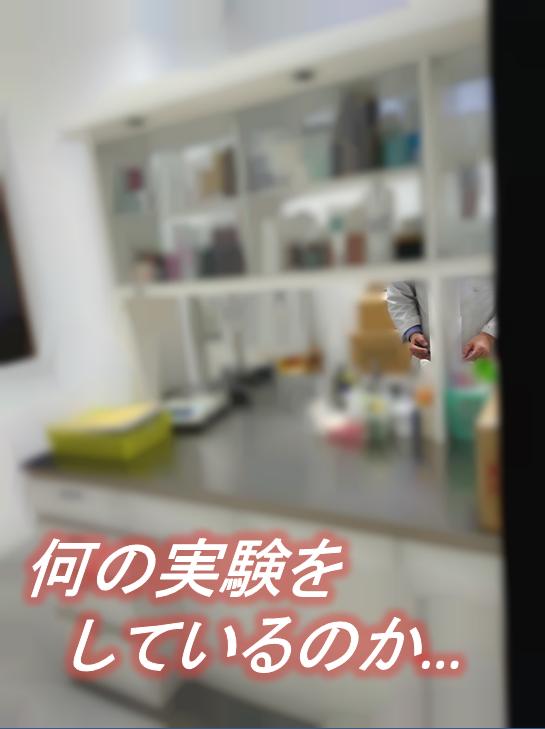 blog_kakou.png