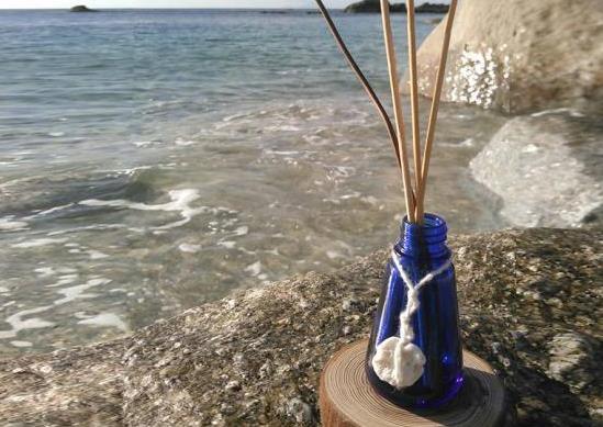 <2016文化祭>屋久島から「やわら香」も文化祭に参加します!