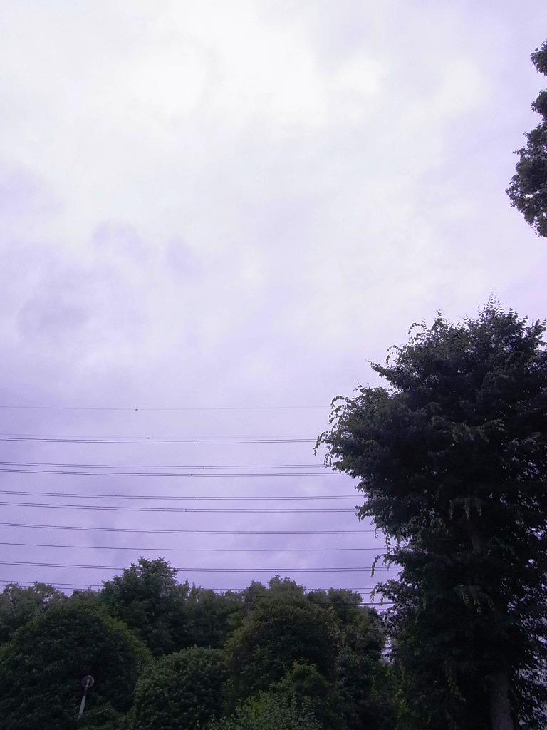 梅雨にオススメ!「湿」をためない暮らし方