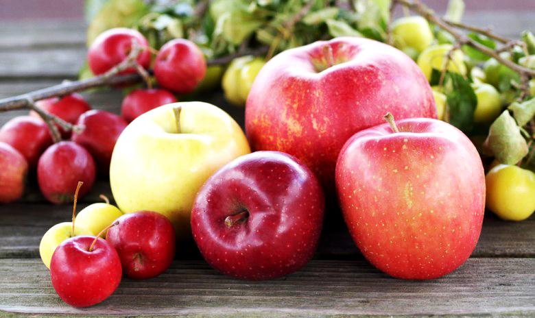 Vol.102 リンゴは皮ごと