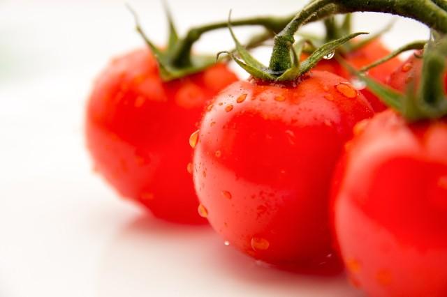 Vol.180 トマトの教訓