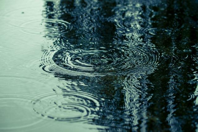 Vol.218 梅雨の養生法1
